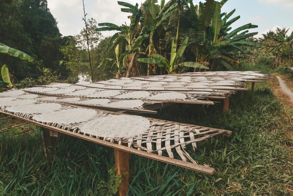 Rijstvellen drogen in Vietnam.