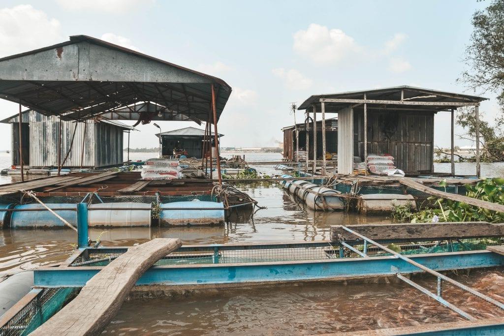 Fish Farm Mekong Delta.