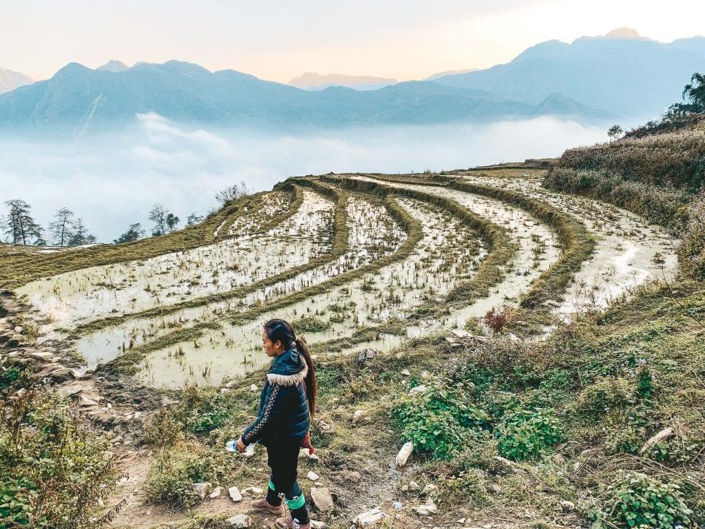 Rijstterassen in Vietnam.