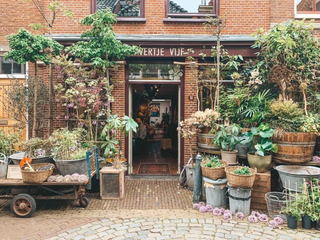 Gouden straatjes Haarlem